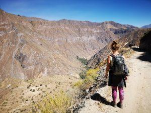 How to hike Colca canyon on your own