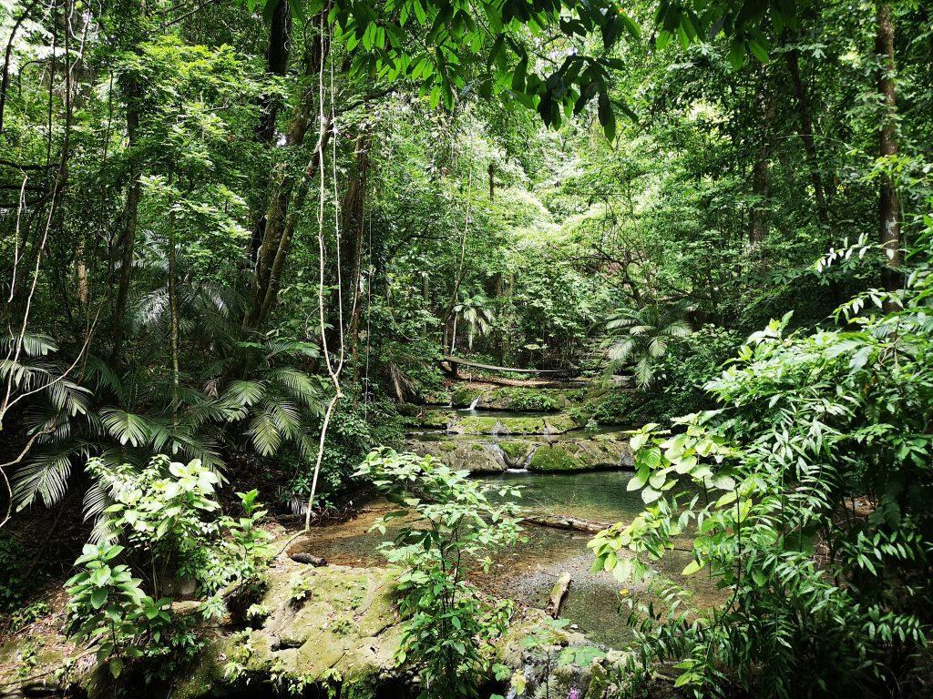 Majevsko kraljestvo Palenque - Mehika